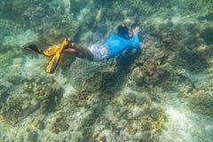 Snorkeling nurek obrazy royalty free
