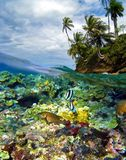Snorkeling paradise in Panama Stock Image