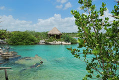 Free Snorkeling Park In Mexico Royalty Free Stock Photos - 5704608