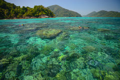 Snorkeling point with beautiful coralscape at Surin national par Stock Images