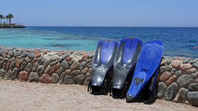 Snorkeling in the red sea. Snorkeling equipment for fun in the sea Royalty Free Stock Photography