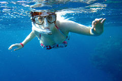 Snorkeling in the sea Royalty Free Stock Photo