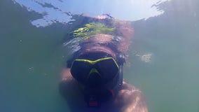 Snorkeling and seaweed stock video