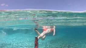 Snorkeling Seychelles rozszczepiający widok zdjęcie wideo
