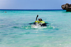 Snorkeling in Smith Cove. Man snorkels out from Smith Cove, Grand Cayman Royalty Free Stock Photo
