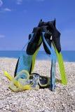 snorkeling sommar Arkivbilder
