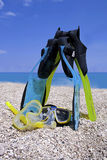 Snorkeling in summer Stock Images