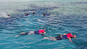 Snorkeling swim in the Red Sea. Snorkeling swim and snorkel in the Red Sea while enjoying the underwater world stock video footage