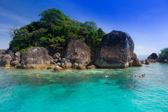 Snorkeling in Thailand. This place in Koh Chang Thailand Royalty Free Stock Image