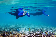 Snorkeling on Great Barrier Reef. Snorkeler giving the thumbs up when snorkelling at the Great Barrier Reef Royalty Free Stock Photo