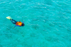 Snorkeling in tropical Maldives island . Royalty Free Stock Photography