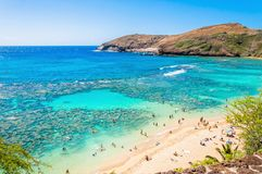 Snorkeling tropical paradise Hanauma bay in Oahu, Hawaii Royalty Free Stock Images