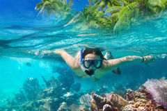 Snorkeling in the tropical sea. Beautiful woman at snorkeling in the tropical sea Stock Photography