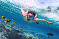 Snorkeling in the tropical sea. Beautiful woman at snorkeling in the tropical sea Stock Photos