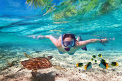 Snorkeling in the tropical sea. Beautiful woman at snorkeling in the tropical sea Royalty Free Stock Images