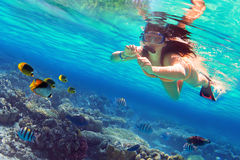 Snorkeling in the tropical sea Royalty Free Stock Photography