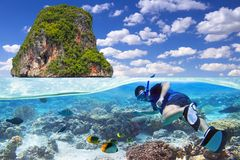 Snorkeling in the tropical water Stock Images