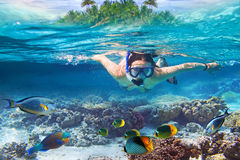 Snorkeling in the tropical water of Maldives. Young woman at snorkeling in the tropical water Royalty Free Stock Images