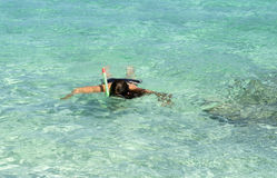 Snorkeling in the tropics Royalty Free Stock Photos