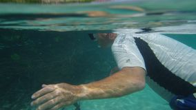 Snorkeling under a turquoise sea water. A shot of a man underwater with a snorkeling mask is observing the mangroves and a school of fish infront of him stock video