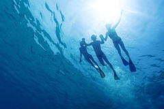 Snorkeling. Underwater view of friends snorkeling in the tropical sea Stock Image