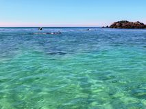 Snorkeling w oceanie Zdjęcie Royalty Free