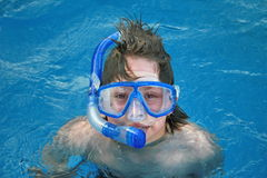 Snorkeling in water Stock Images