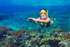 Snorkeling woman above the coral reef Stock Photography