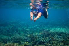 Snorkeling woman in full face mask. Underwater coral landscape and snorkel. Female swimmer in snorkeling mask. Woman learning to swim. Tropical vacation Stock Image