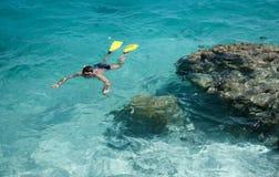 snorkelling тропическая каникула стоковое изображение rf