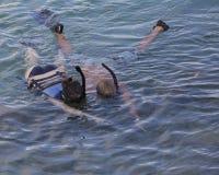 Snorkelling Zdjęcia Stock