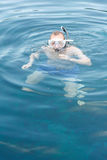 Snorkelling Royalty Free Stock Photography