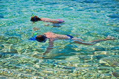 Snorkelling Royalty Free Stock Image