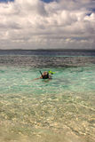 Snorkelling. Person snorkelling in the ocean stock images