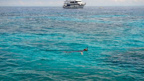 Snorkelling in the clear turquoise water stock video footage