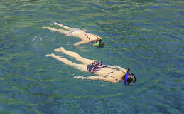 Snorkelling. Girls swimming in the sea with masks Royalty Free Stock Image
