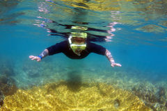 Snorkelling on Great Barrier Reef. Man snorkelling on Great Barrier Reef in Whitsundays Australia Stock Images