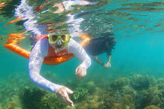Snorkelling on Great Barrier Reef. Woman and man snorkelling on Great Barrier Reef in Whitsundays Australia Stock Image