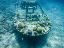 Snorkelling holownik łódź fotografia royalty free
