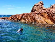 Free Snorkelling In A Tidal Rock Pool Stock Photography - 109641942