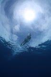 snorkelling kvinna för bikini Arkivbild