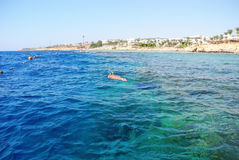 Snorkelling in the Red Sea. Girl snorkeling, enjoying the coral in the Red Sea royalty free stock image