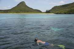 Snorkelling the reef, Lord Howe Island, Australia. Lord Howe Island has one of the most healthy and pristine reefs in the world diving and snorkeling is a major royalty free stock photo