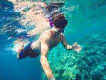 Snorkeln simmar i grunt vatten, Röda havet, Egypten Arkivfoto