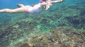Snorkla för flicka som är undervattens- stock video