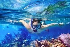 Snorkla i det tropiska vattnet Fotografering för Bildbyråer