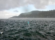 Snorkla i mitt av havet under ett tropiskt regn arkivfoton