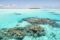 Snorkla i turkosfrikändvatten med korallrever, South Pacific hav med ön arkivfoton