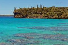 Snorkla lagune i den Lifou ön, Nya Kaledonien, South Pacific Royaltyfri Fotografi