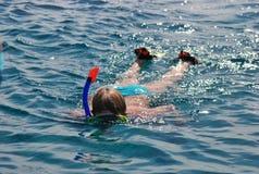 Snorkla och dyka i Röda havet Arkivfoto